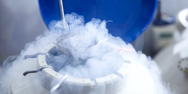 frozen embryos and divorce